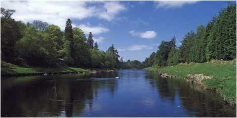Scotland's Finest Salmon Fishing